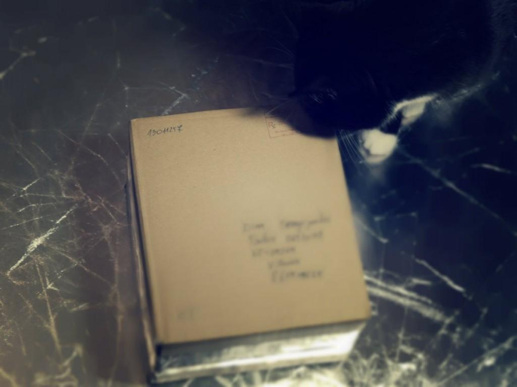 Katinas nusprendė padėti atidaryti dėžutę.
